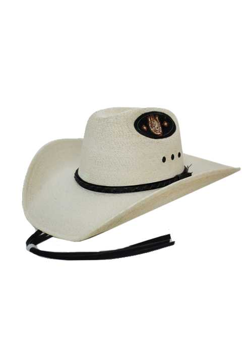 Detailed Band And Lucky Horse Shoe Embroidered Patch Cowboy Hat