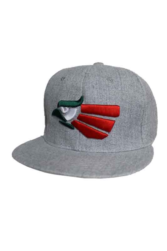 Heather Gray Mexico Eagle Symbol Design Snap Back